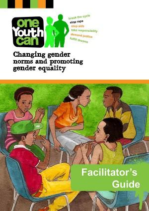 training manual on human rights monitoring